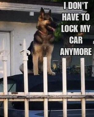 Excellent car alarm!