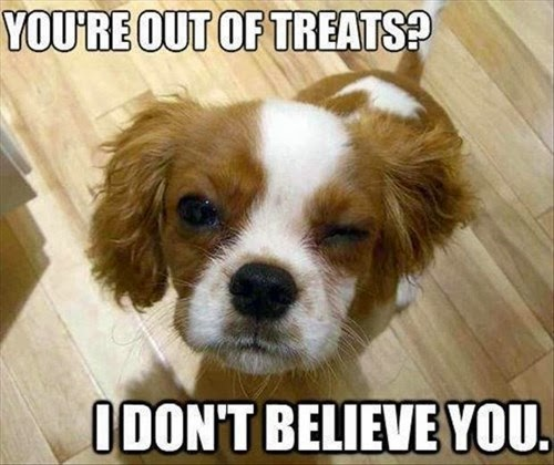 out of treats